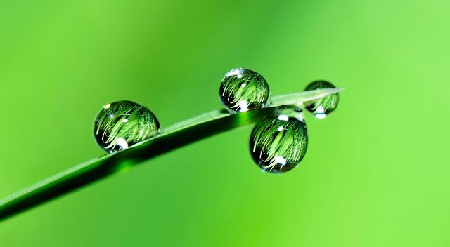 , ゴアテックス以外にもおすすめ!透湿防水素材の種類と選び方。, GreenTimes(グリーンタイムス)